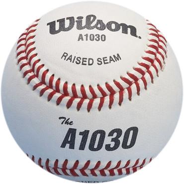 Honkbal Wilson A1010 9 Inch