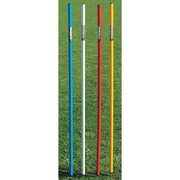 Trainingspaal Barret met Punt - Diverse kleuren
